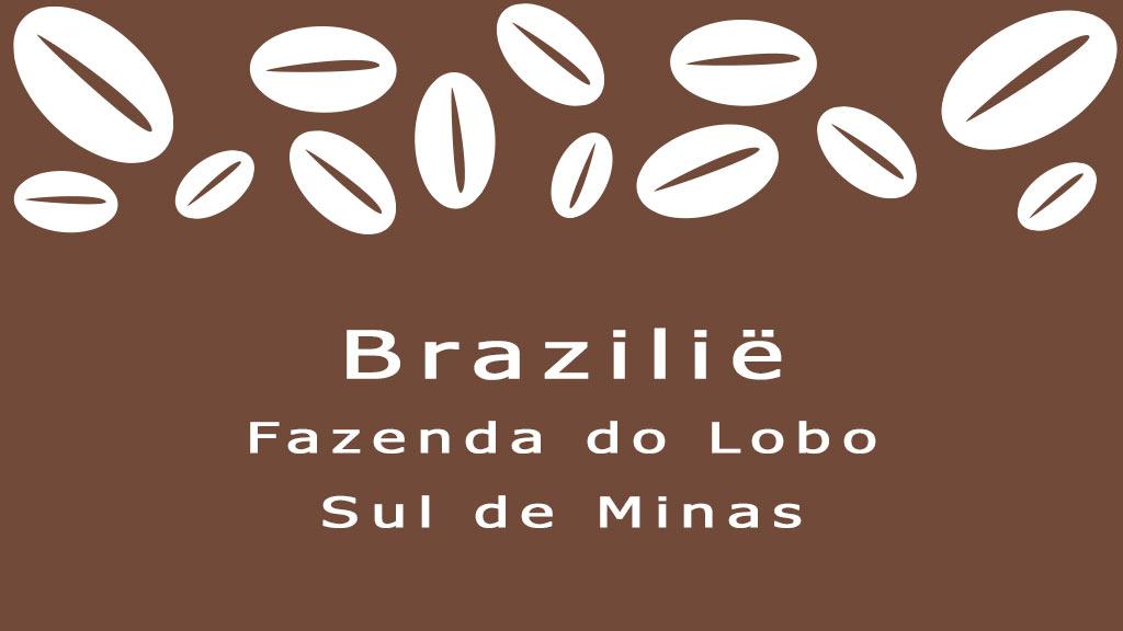Brazilie koffiebonen sul de minas